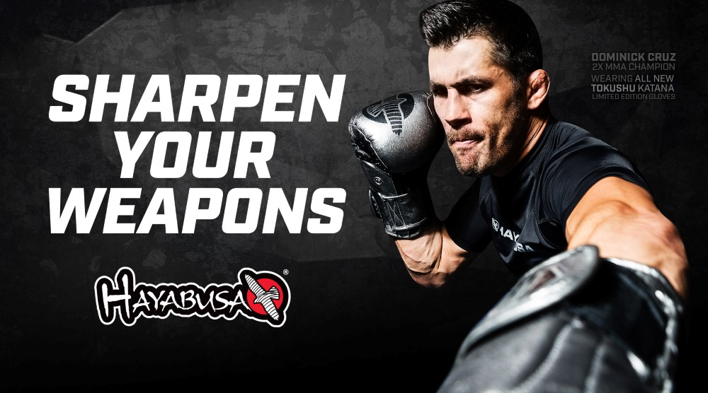 Hayabusa Katana boxing gloves